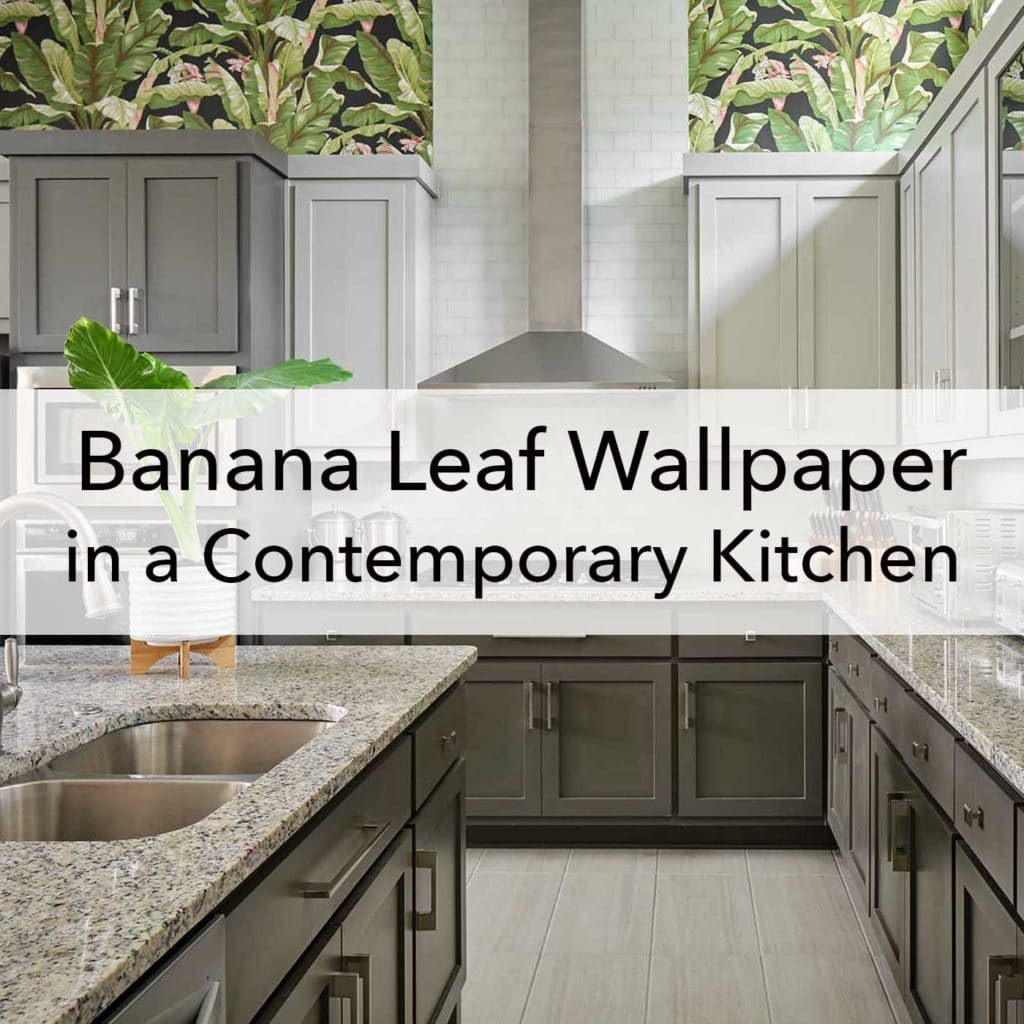 Banana leaf wallpaper in a contemporary kitchen, blog